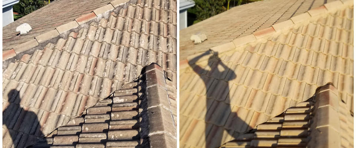 Roof Cleaners Near Me