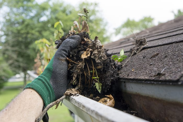 gutter cleaning in west fruitville Florida